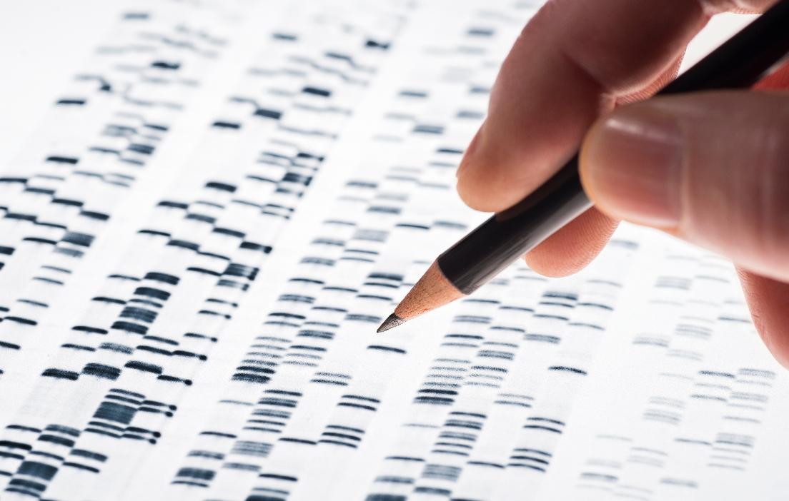 Medizinische Genetik medica